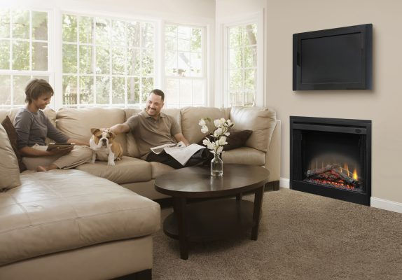 Dimplex BF39DXP fireplace insert