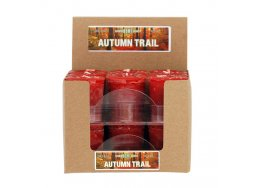 Country Home Autumn Trail candles